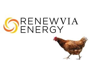 Renewvia Energy to Install Solar at Five Georgia Poultry Farms